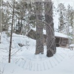 Panopticon-The-Scars-Of-Man-On-The-Once-Nameless-Wilderness-Part-1-CD-69282-1
